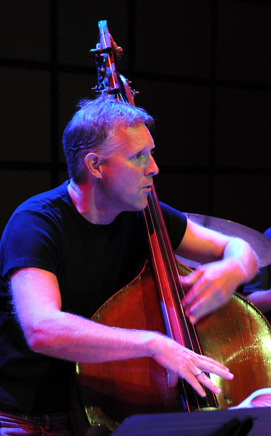 Mike Downes Trio