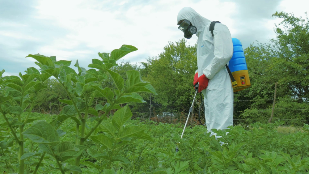 man-in-a-protective-suit-spraying-pesticide-in-garden-close-up_bykyc0_mx_thumbnail-full01.png