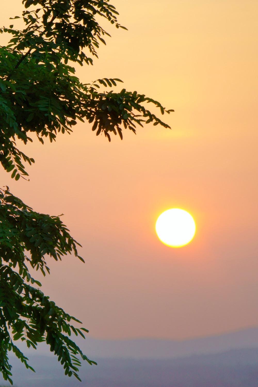 Dawn Zen