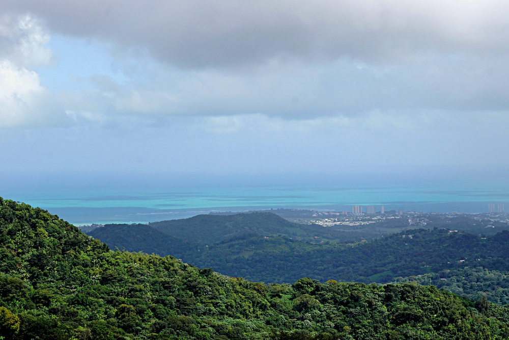 View from El Yunque National Forest, Puerto Rico