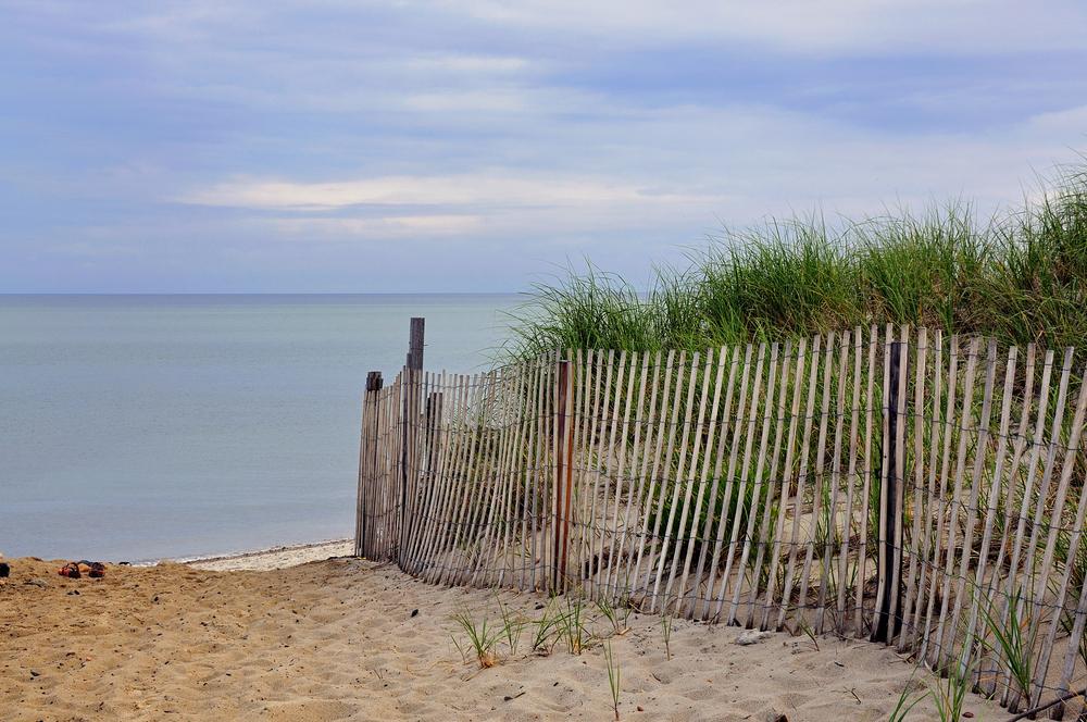 Chapin Dune 1.jpg