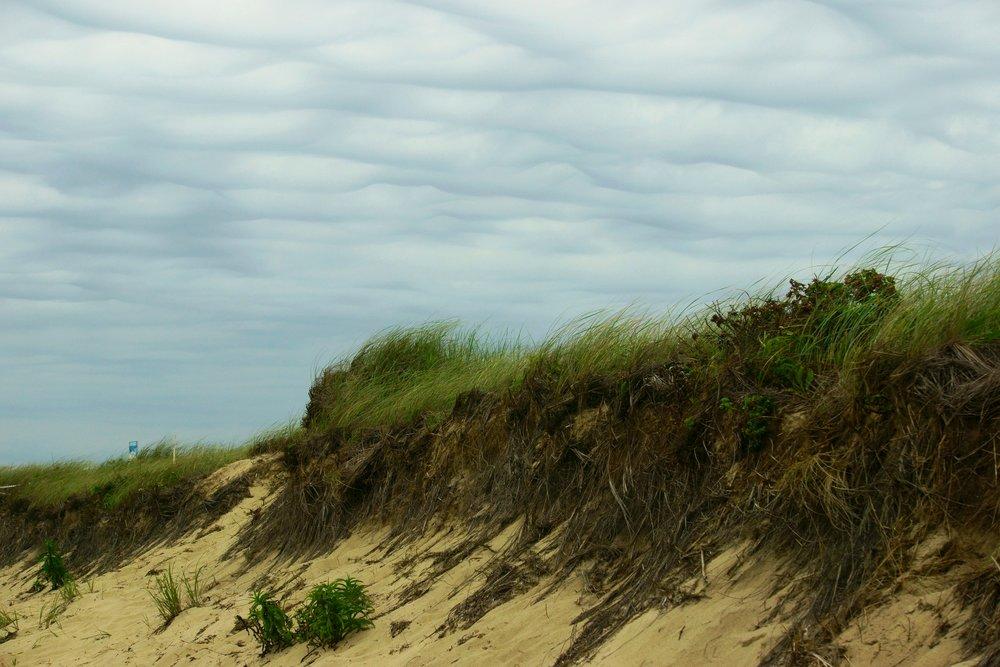 Falmouth Dune