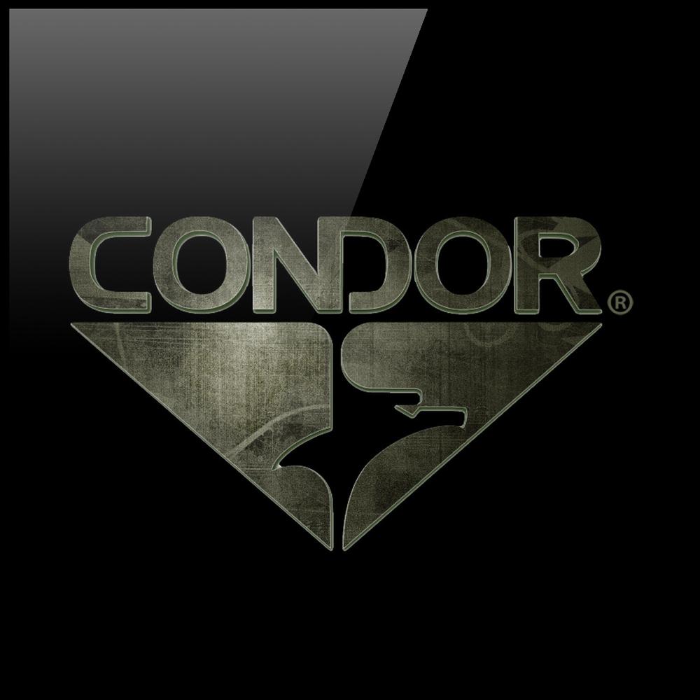 Condor Gloss Logo by Graham Hnedak Brand G Creative 06 JAN 2016.jpg