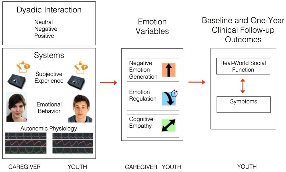 Figure 15.  Dyadic interaction study rationale