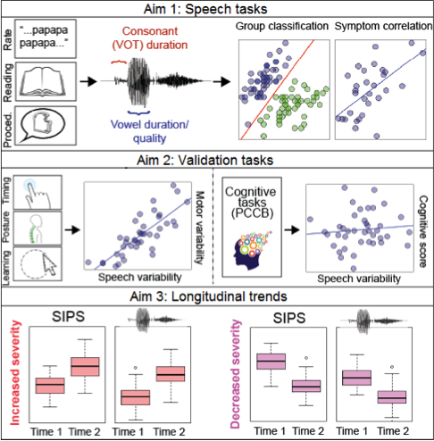 Figure. 9b:  Outline of aims. (1) Measures of speech collected from 3 tasks will be input to analyses classifying CHR and control speech, and correlated with symptom severity. (2) Speech variability is predicted to be correlated with motor variability, but not with cognitive measures. (3) Changes in speech are predicted to track symptom changes, both for those who improve and those who decline at 12 months.