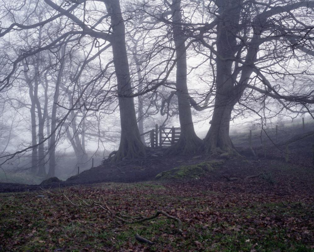 Ftografía de serie Bowland —Juno Doran