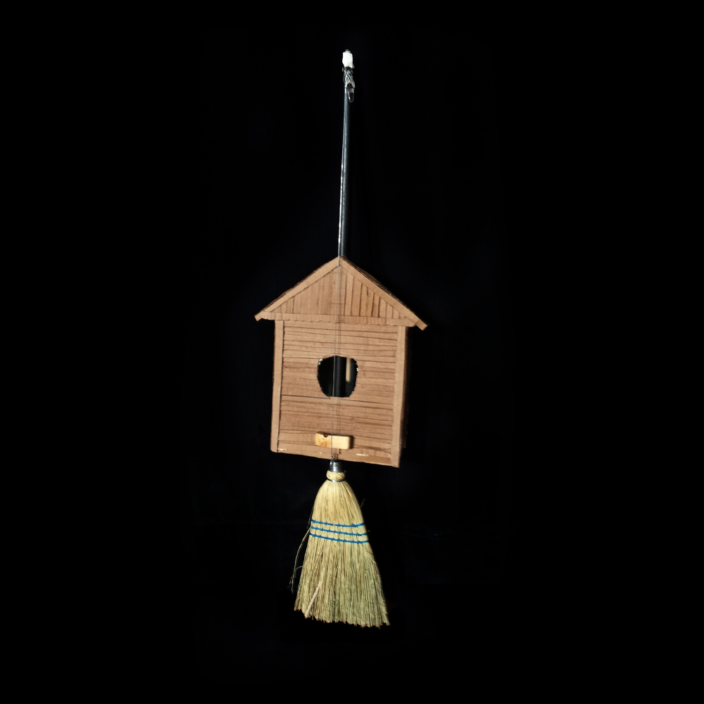 birdhouse guitar