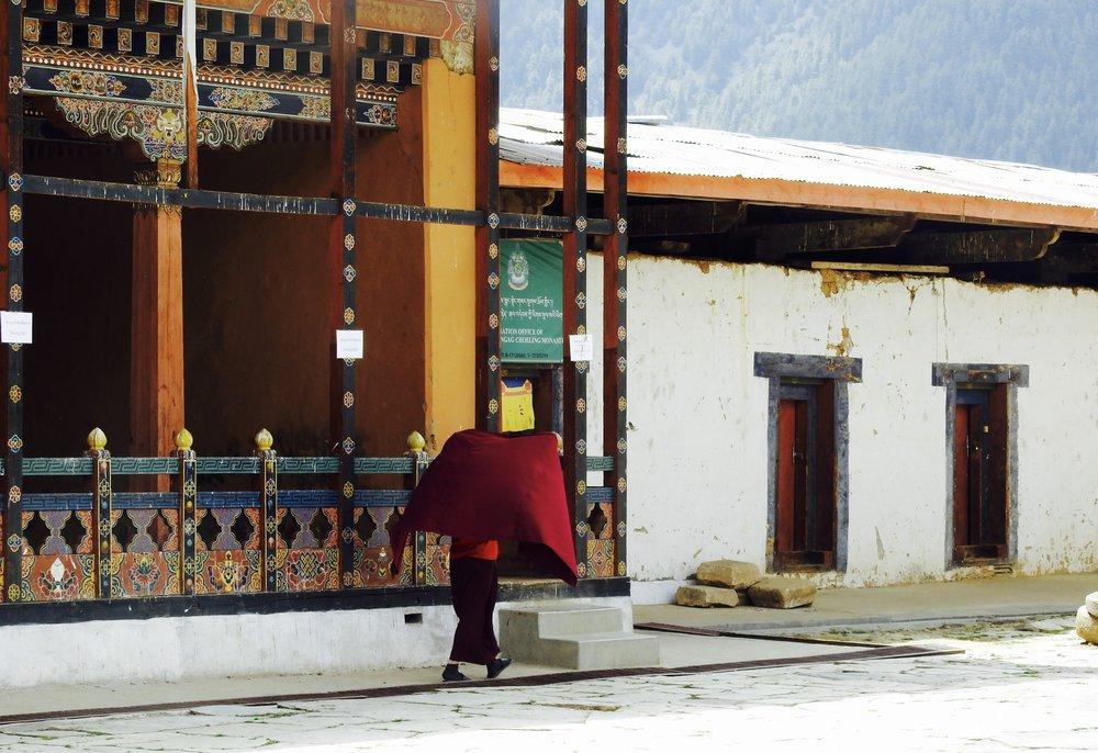 A monk at Gangtey Monastery, Phubjika