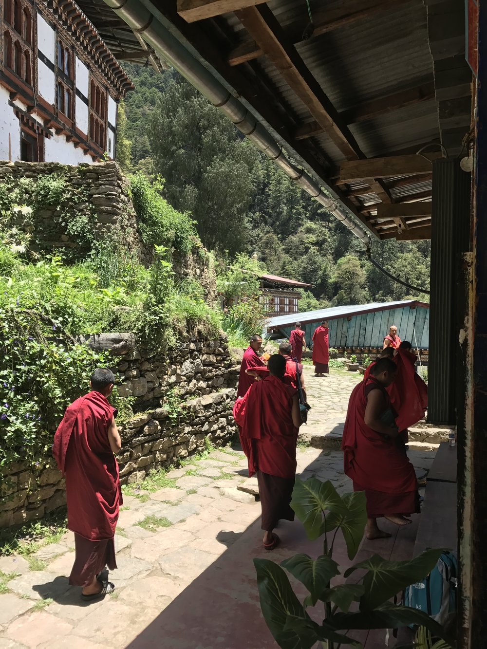 The monks at Dodedrak Monastery