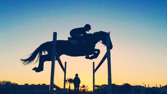 horse_sky_.jpg
