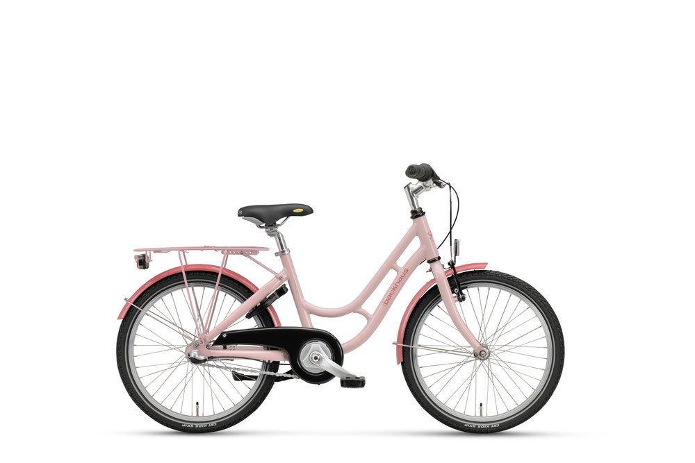 Princess Sart Pink 33 cm 20 t VB171804.jpg