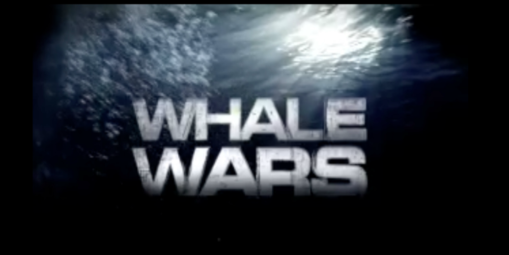 Whale Wars POS rectangle.png