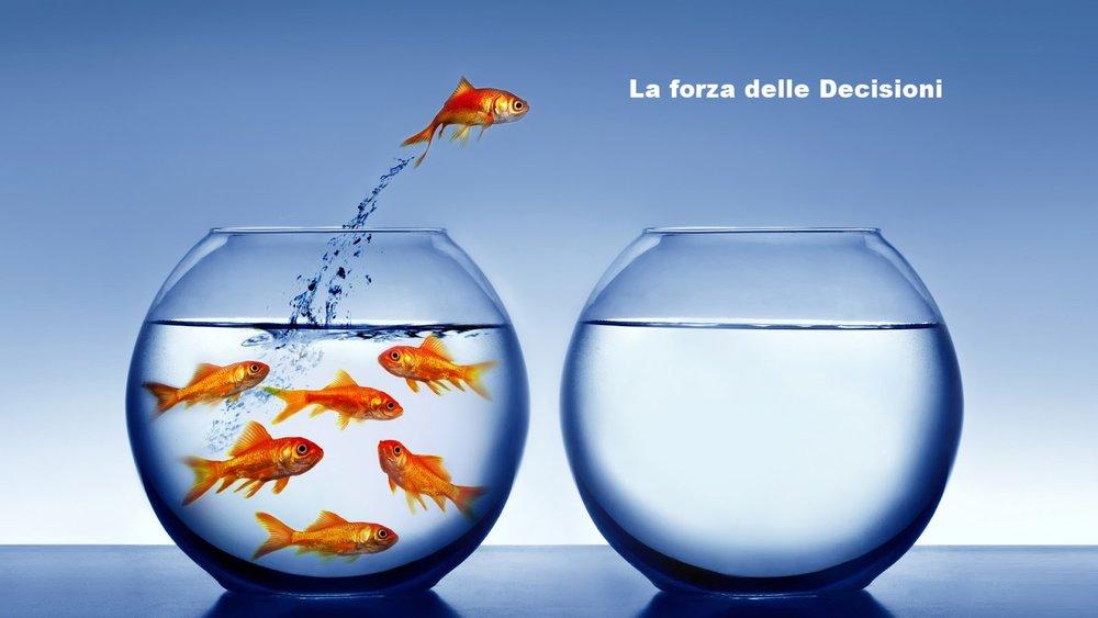La Forza delle Decisioni - Dr Bellucci