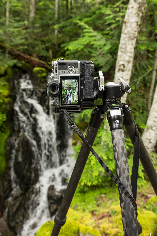 North Cascades National Park, Washington state, USA