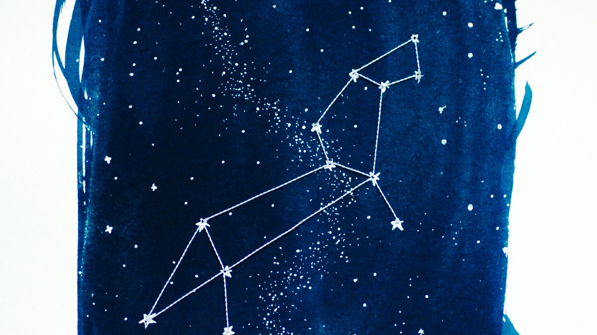 zodiac-leo-detail