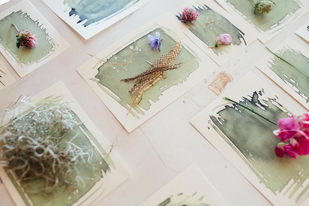 making cyanotypes on paper // (c) Jocelyn Mathewes