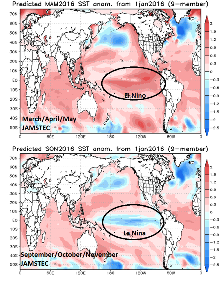 JAMSTEC sea surface temperature anomaly forecast maps for the March/April/May and September/October/November time periods; courtesy Japan Meteorological Agency