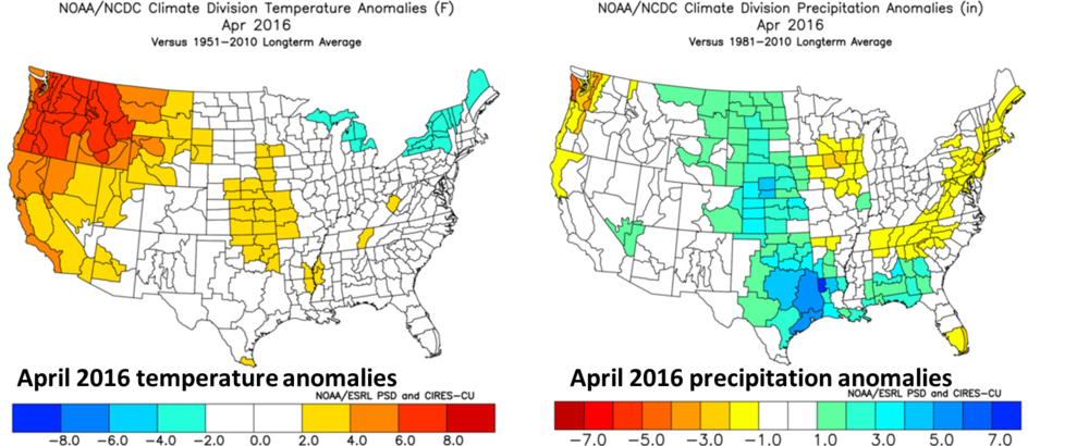 April 2016 temperature (left) and precipitation (right) anomalies; courtesy NOAA