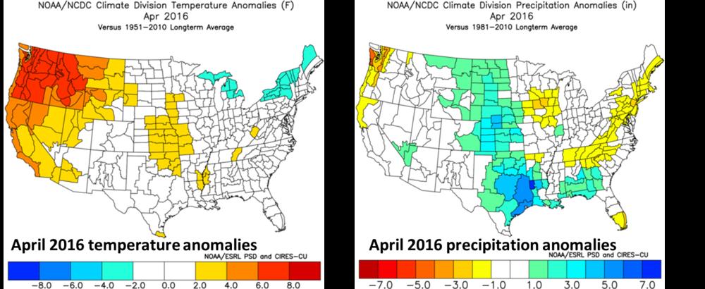 April 2016 temperature (left) and precipitation (right) anomalies; courtesy NOAA