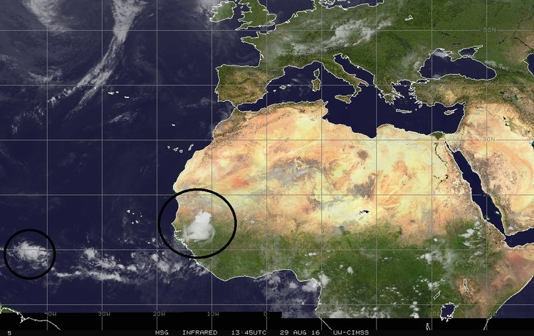 IR satellite image of African and the eastern Atlantic with a couple of tropical waves of interest; courtesy University of Wisconsin/CIMSS