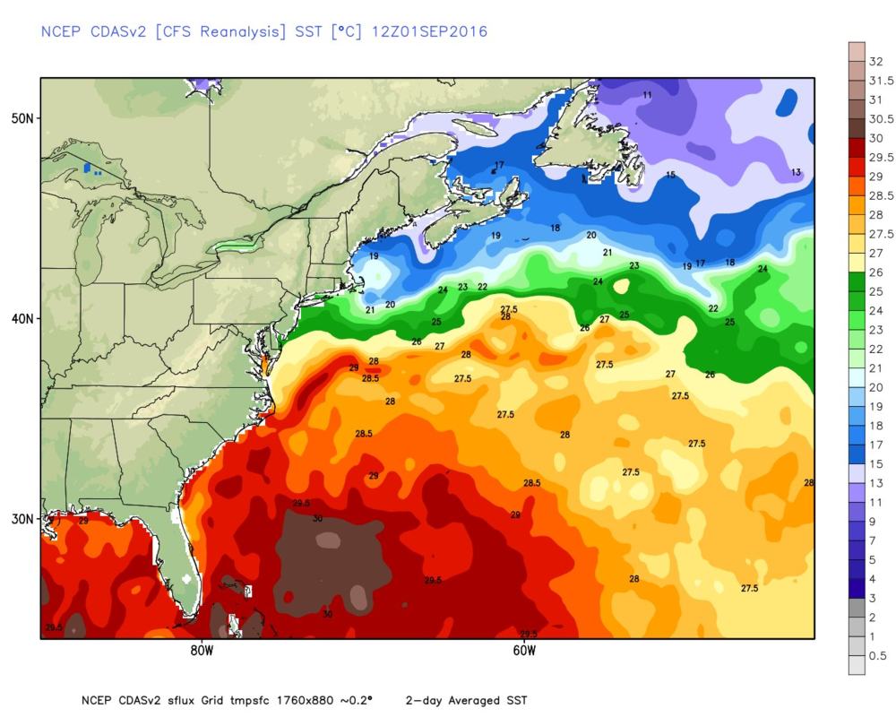 Current sea surface temperatures; map courtesy Weather Bell Analytics