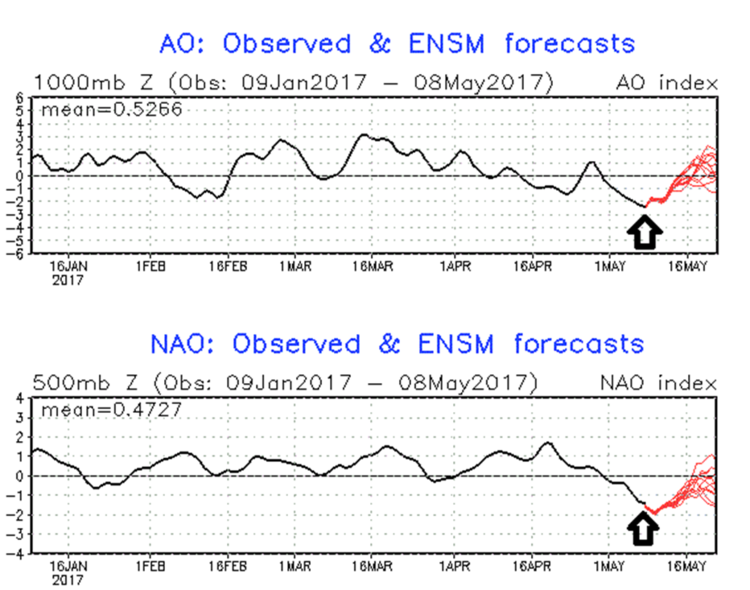 Arctic Oscillation (top) and North Atlantic Oscillation (bottom) index values for the current time and past few months (in black) and forecasted values are shown in red through the month of May; data courtesy NOAA
