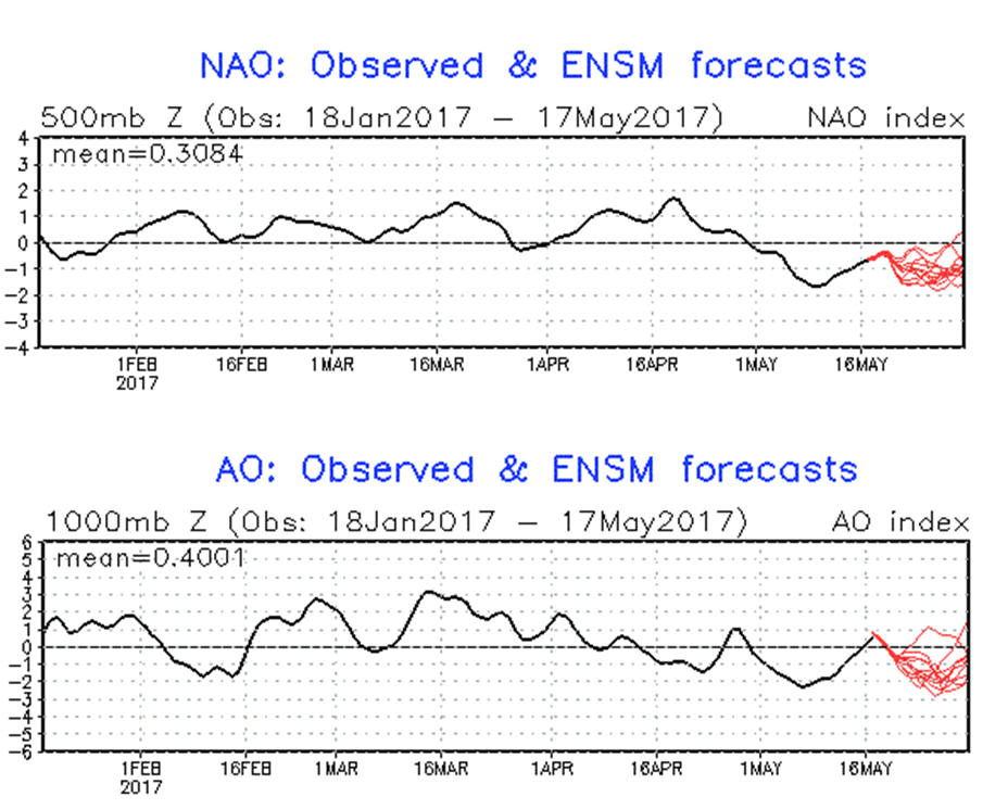 NAO (top) and AO (bottom) forecasted to spend much of the time in negative territory (red) as we go through the second half of May; courtesy NOAA