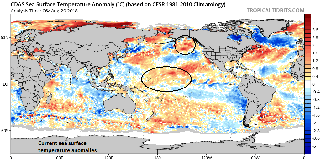 The current sea surface temperature anomaly pattern features a large and expanding area of warmer-than-normal conditions across the central-to-western part of the equatorial Pacific Ocean; courtesy NOAA, tropicaltidbits.com