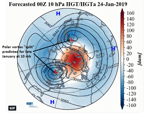 "10-day forecast map (January 24) for 500 mb heights/anomalies features a 'split"" polar vortex; map courtesy AER, Inc. (Judah Cohen), NOAA"