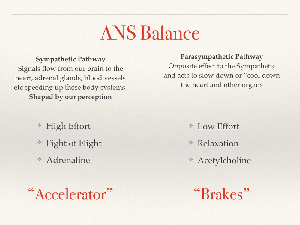 ans-balance