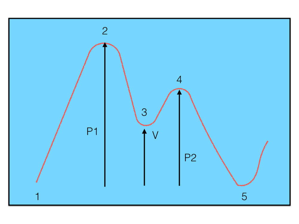 typical BVP pulse waveform