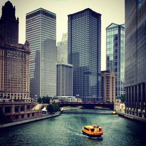 we make professional bed bug extermination more effective for chicago residents