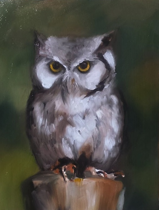 "Owl, oil on wood, 11x14"", 2015"