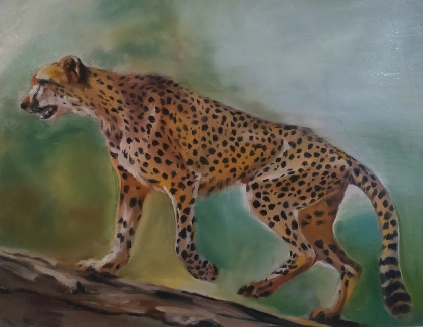 "Cheetah study, oil on wood, 11x14"", 2015"