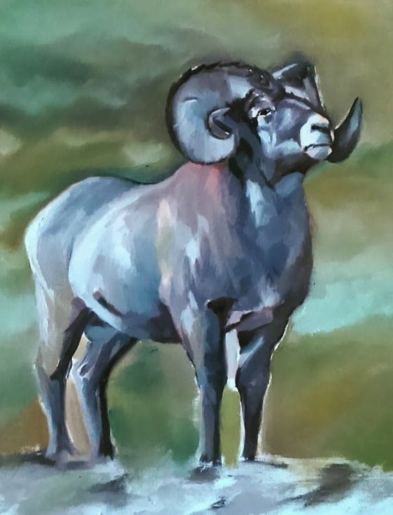 Ram study, oil on wood, 2015
