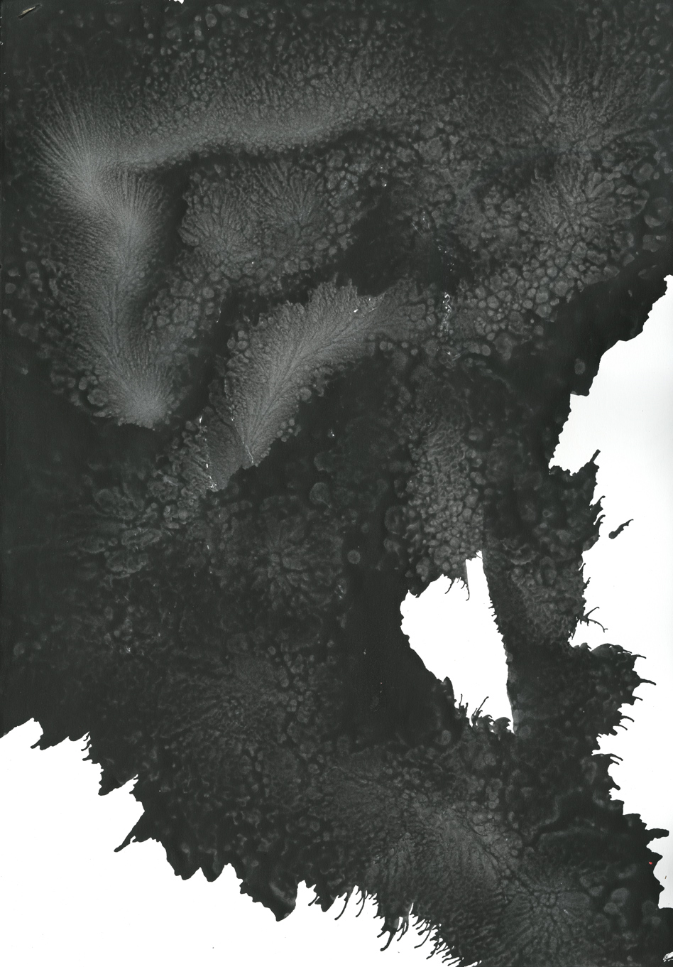 SC-0318