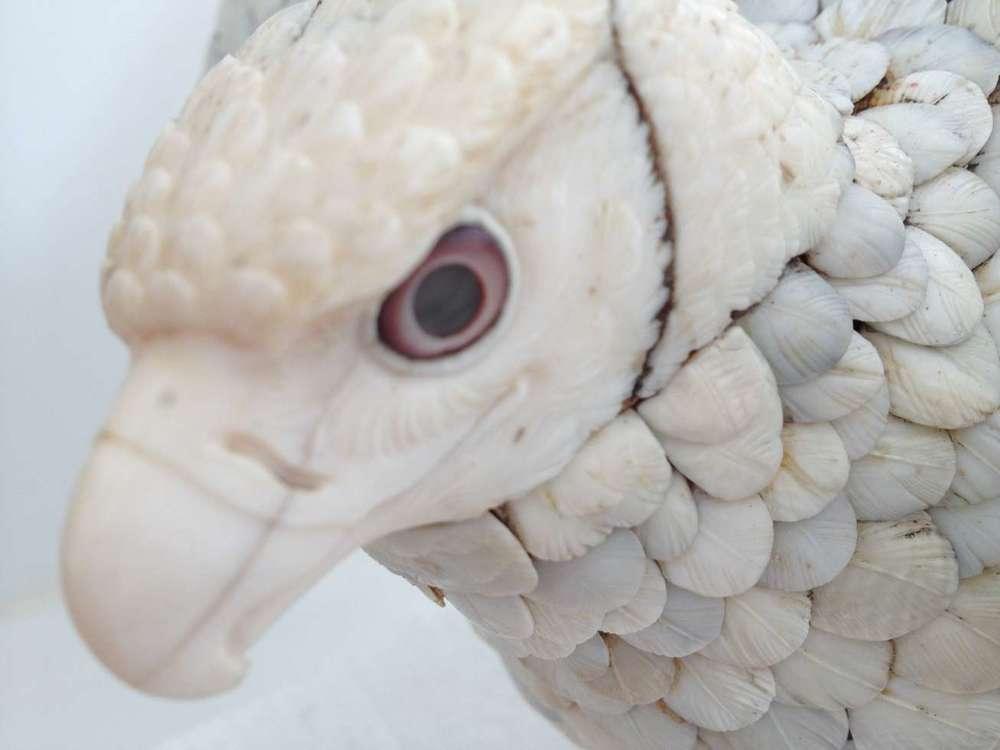 epervier-comblement-resine-ivoire-art-ancien-plumage-restaurarte.jpg