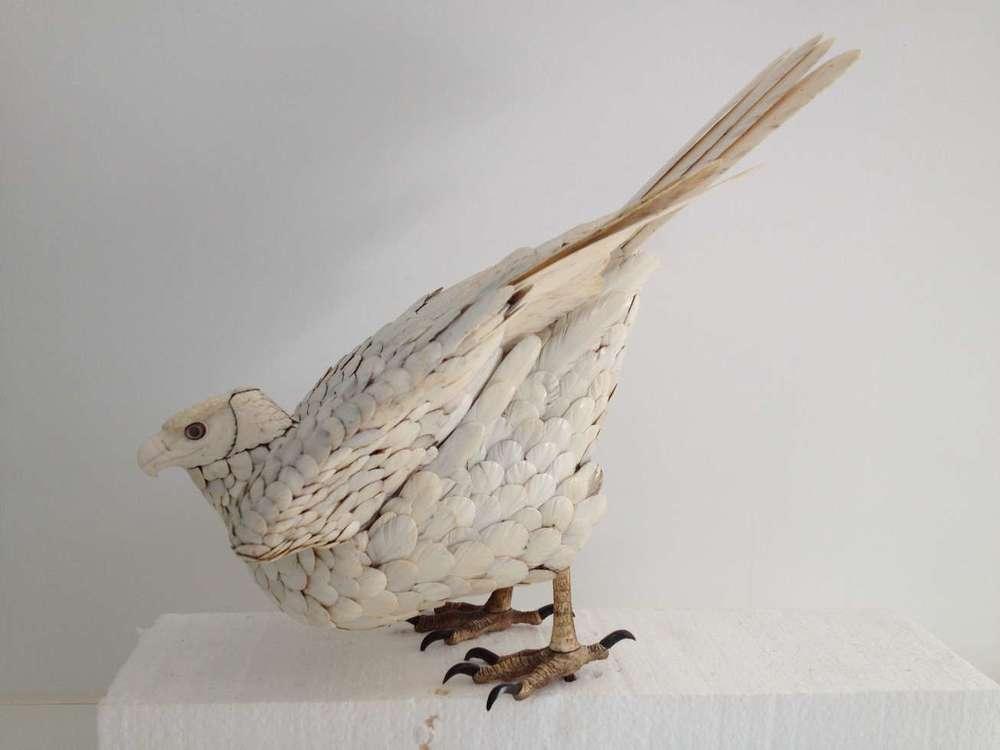 epervier-ivoire-plumage--art-ancien-restauration-restaurarte.jpg