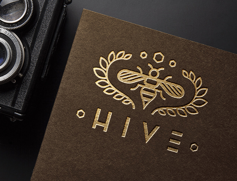 HiveMockup1.jpg