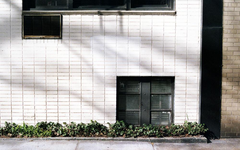 2013-New-York-35-0021-300.jpg