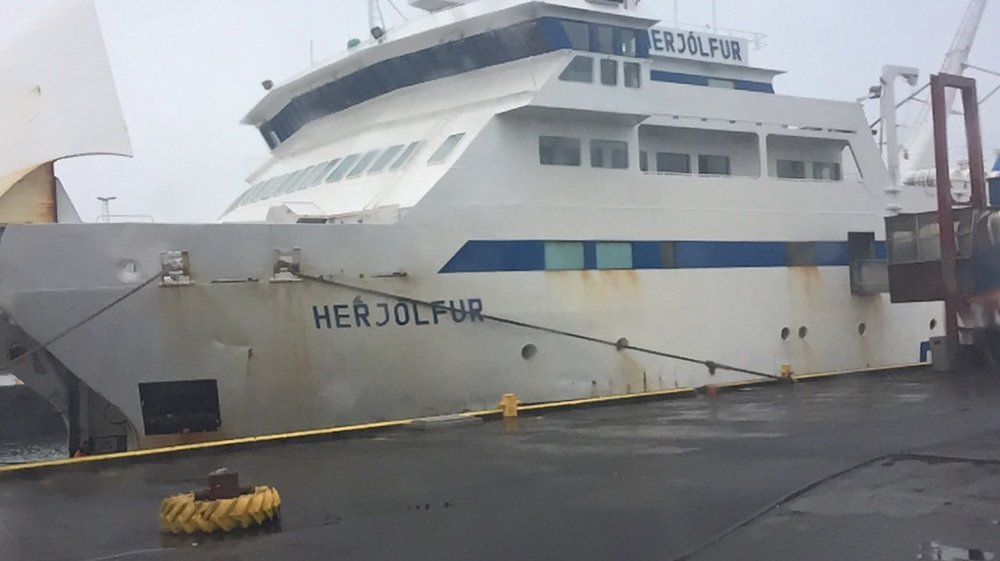 Our ferry. During the winter it has to take the long route up to a port closer to Reykjavik and the ride lasts 2.5 hours. In the summer it's only 30 minutes to shore.