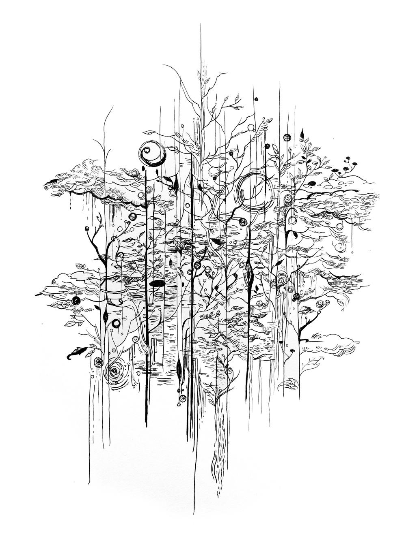 Forest_web.jpg