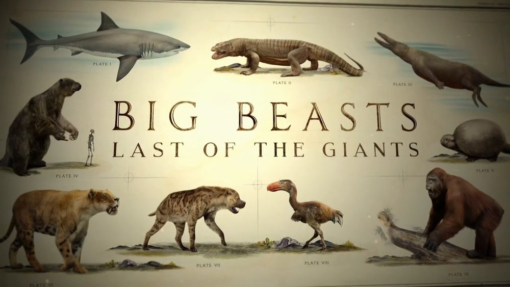 Big Beasts - Offspring Films