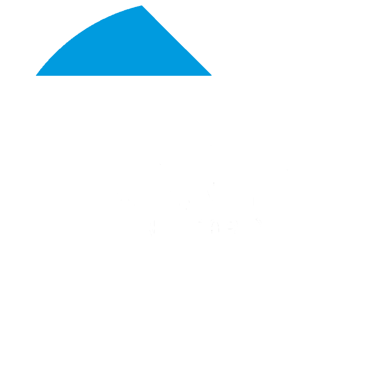 Birds Eye Video LLC