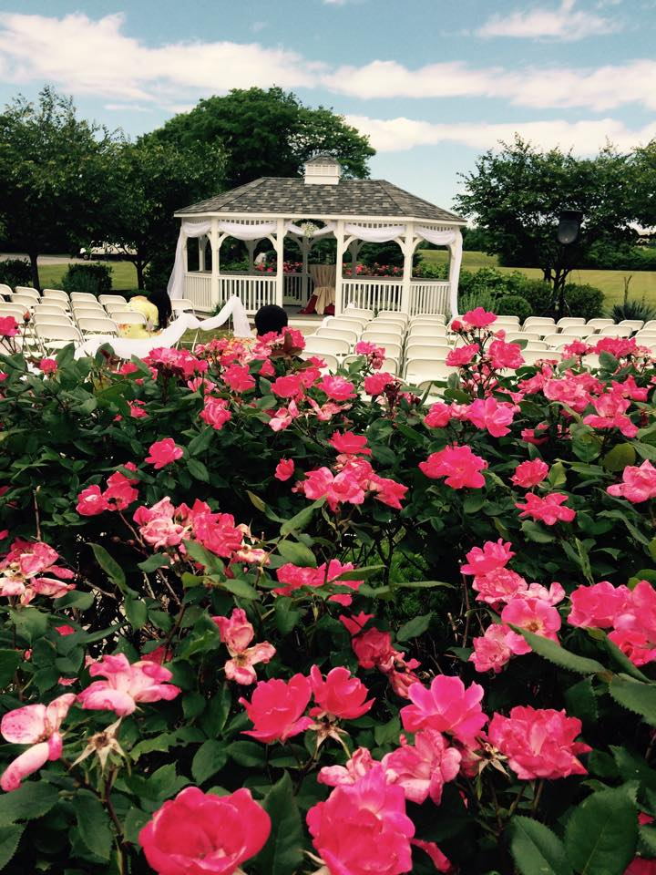 Gazebo with Flowers.jpg