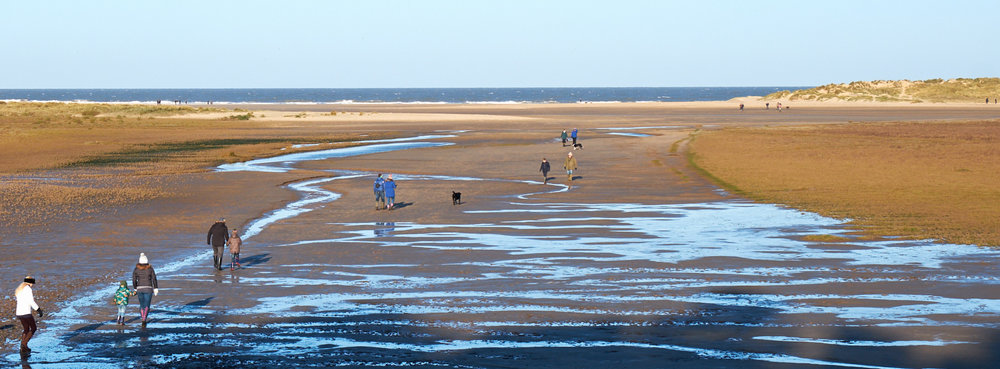 DSCF0556_Holkham_website.jpg