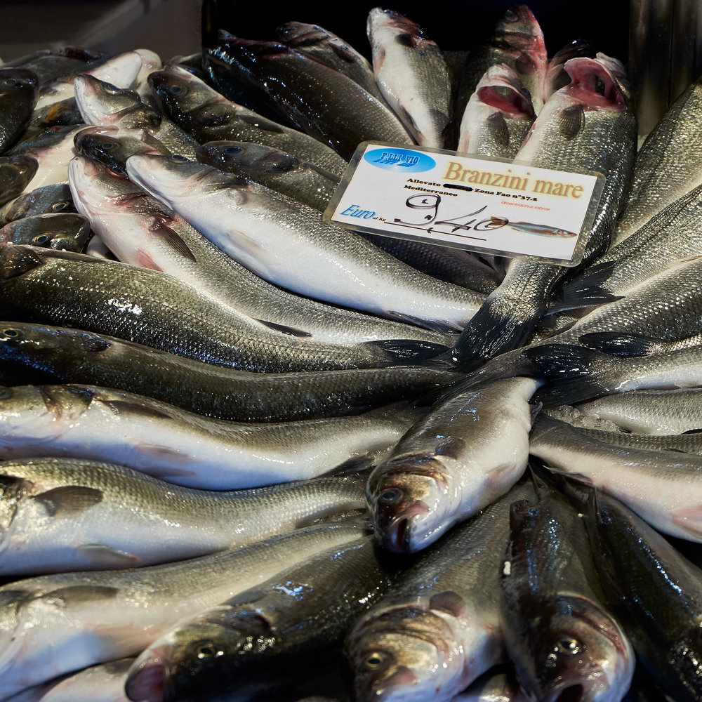 Fresh Sea Bass in the Rialto fish market, Venice