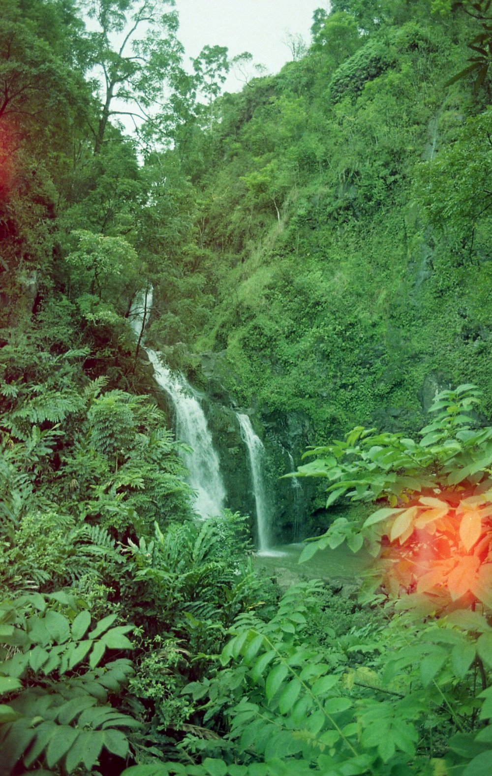 Rainbow Film Hana004.jpg