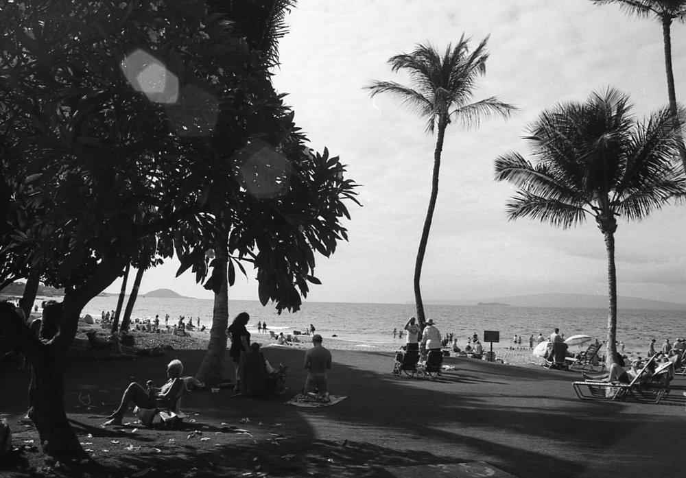 Kodak 400 TX065.jpg