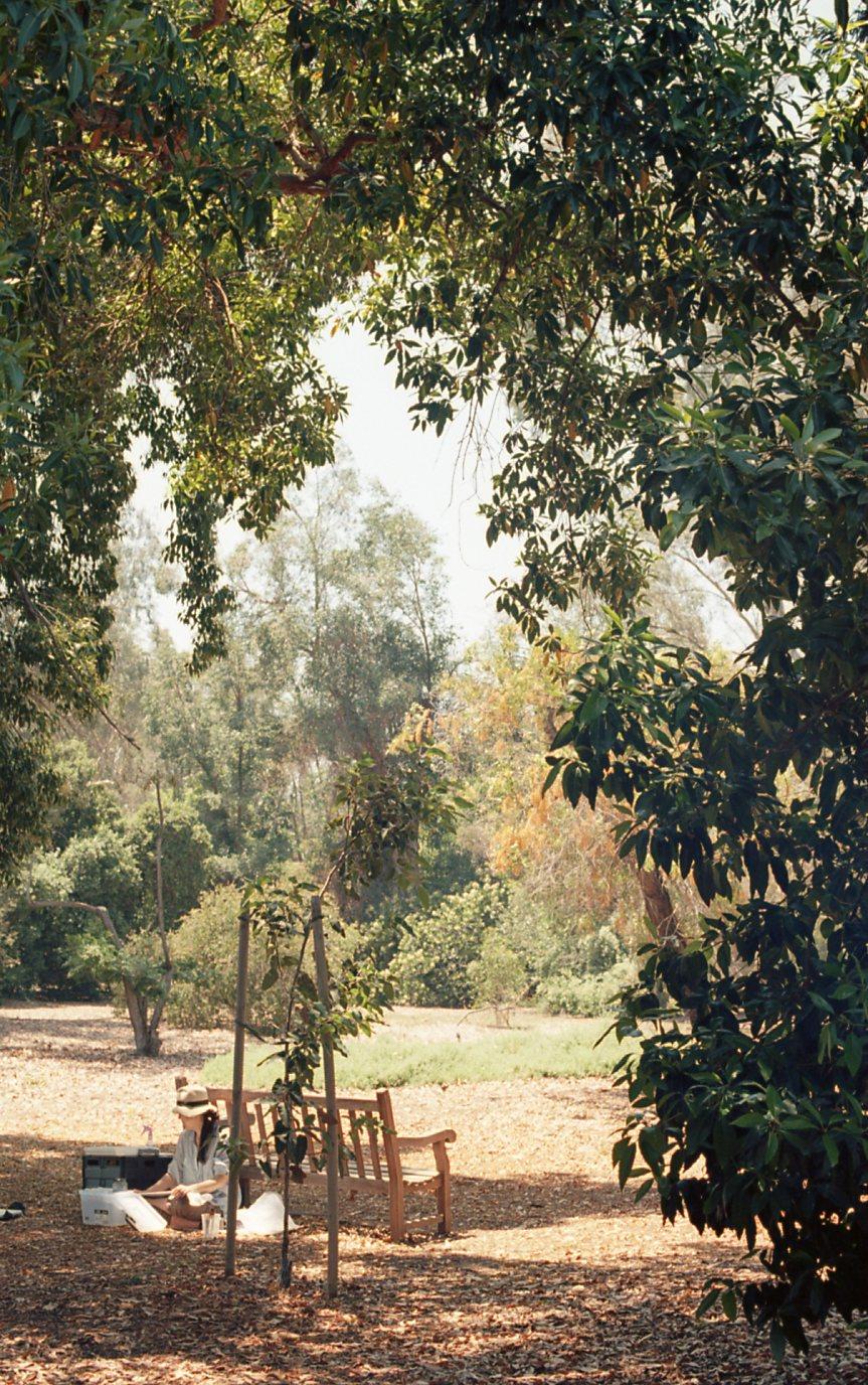 Botanical Gardens031.jpg